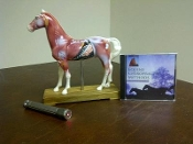 Horse Acupuncture Model+Cold Laser+Horse Chiropractic DVD
